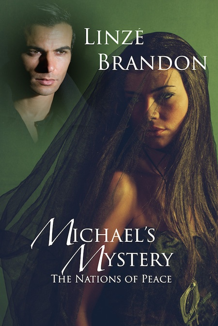 Michael's Mystery cover
