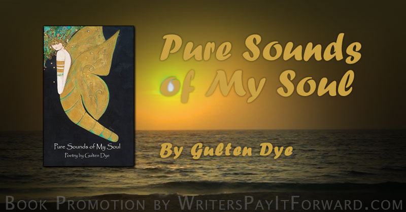 pure sounds of my soul banner