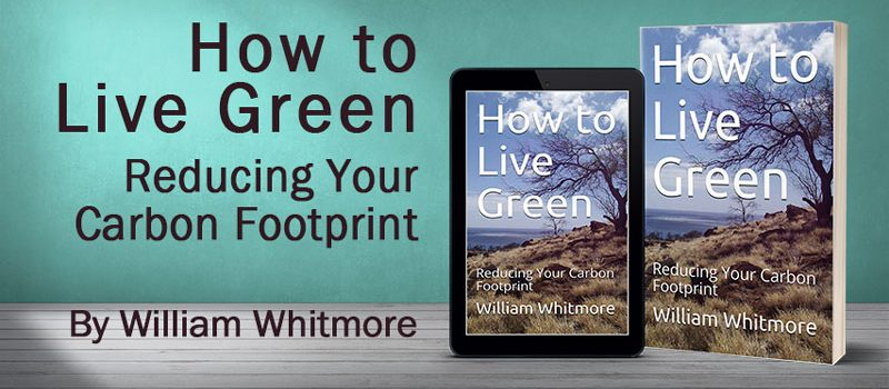 How to Live Green: Reducing Your Carbon Footprint
